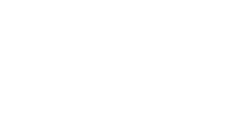 The guiding mission of Rubelli Venezia is to keep alive the original Venetian tradition which inspires their creations, transforming fabrics into veritable works of art.